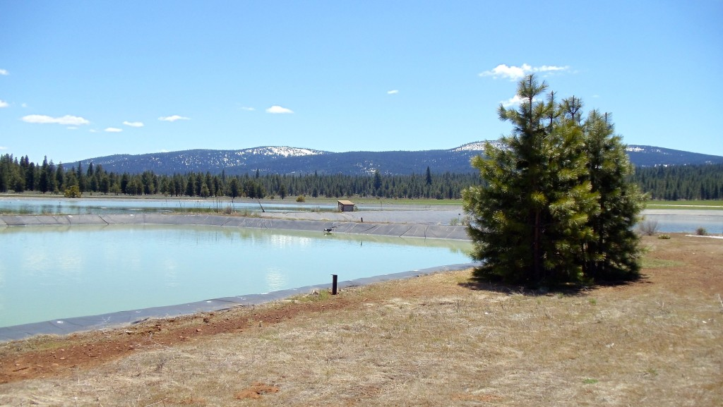 Technology worked on the Eagle Lake sewer pond in 2012.